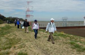 JOY30 春の利根川べり散策 実施報告