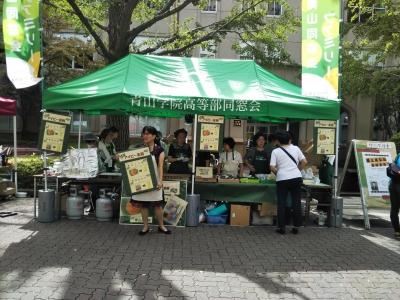 AOYAMA GREEN FESTIVAL アイビー茶房